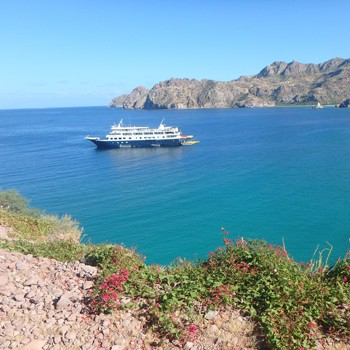 Baja Cruise in the Sea of Cortes