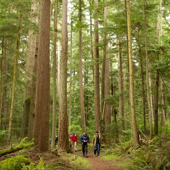 Explore! Olympic Wilderness & San Juan Islands