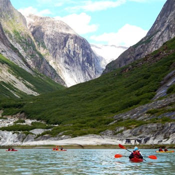 Alaska's Glaciers & Whales