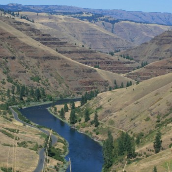 Steelhead Fly Fishing - Grande Ronde River